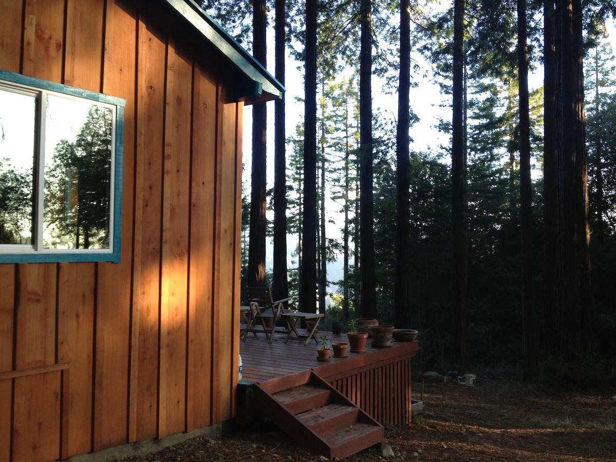 Redwoods & Sunshine & Views & Quiet