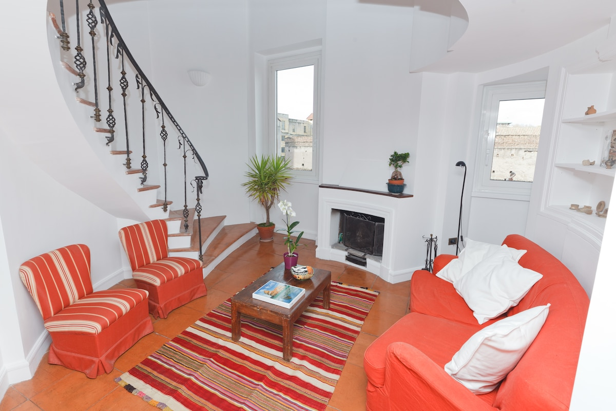 A tower penthouse starting at the elevator and ending at your terrace over Rome. Comfy and very charming