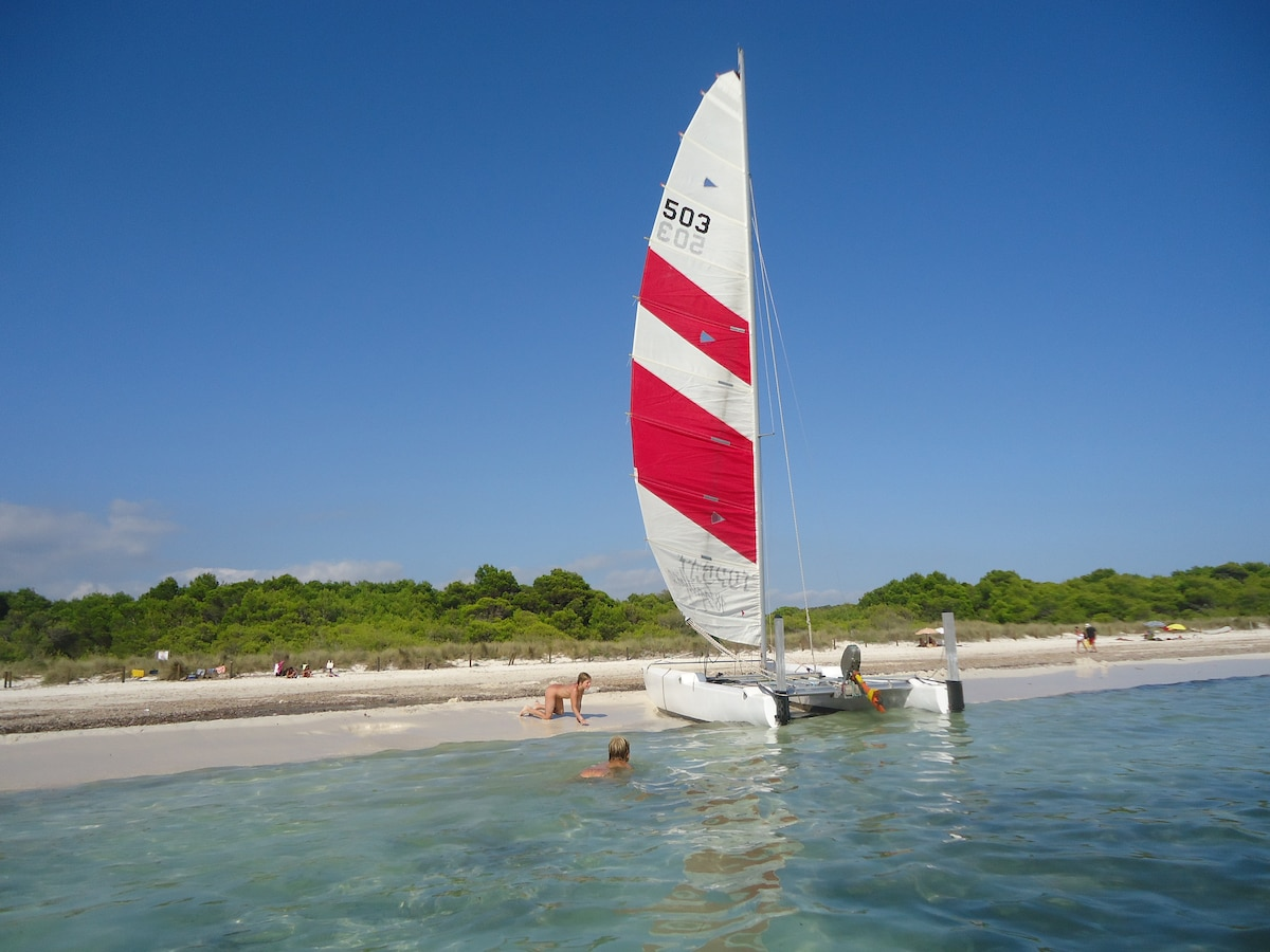 Bienvenidos a la isla : Playas de Son Saura.
