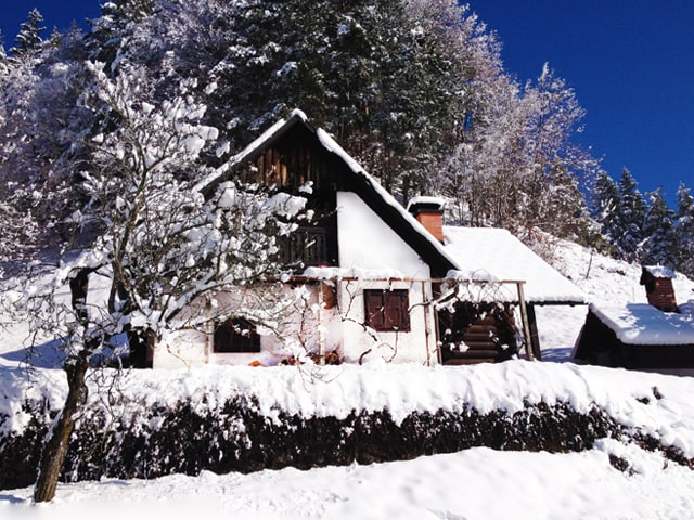 """Winter feeling..."" / January 2014"