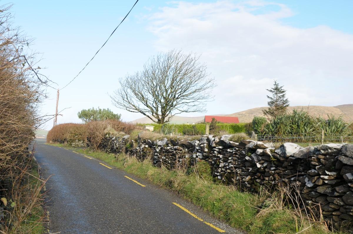 House location-quiet but near Dingle!