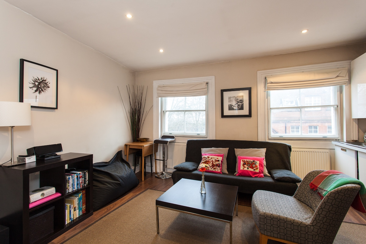 Living Room with sofa bed and entertainment system, plasma tv, dvd player, WIFI, games and books for children and adults