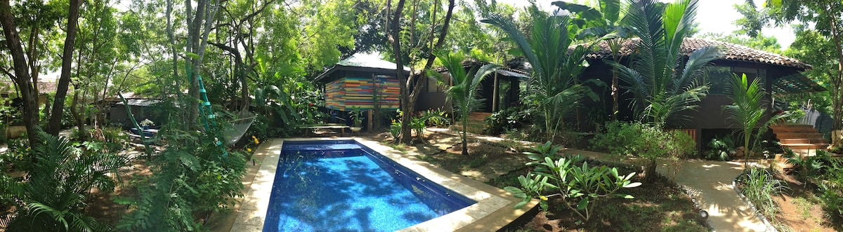As a pond in the jungle the pool serves as a gathering space for both guests and fauna.