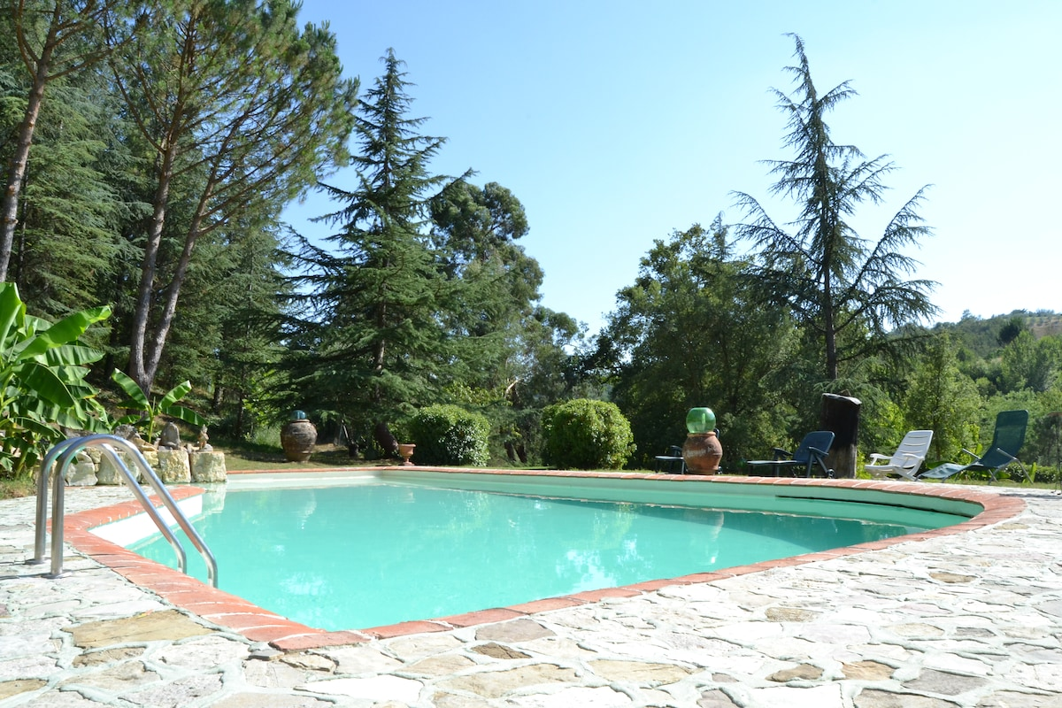 Vintage apt in Tuscany/ pool/ wifi