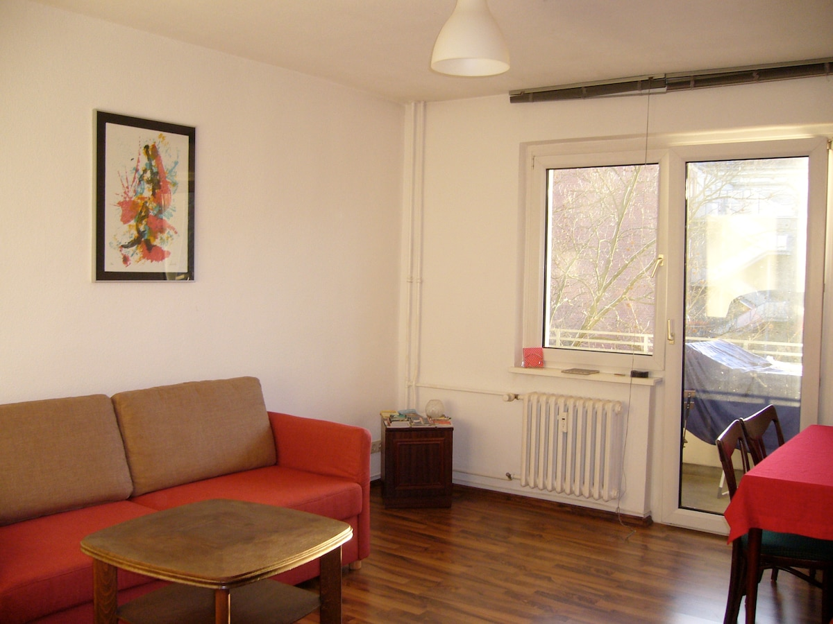 The living room with the new sofa-bed 180 X 200cm