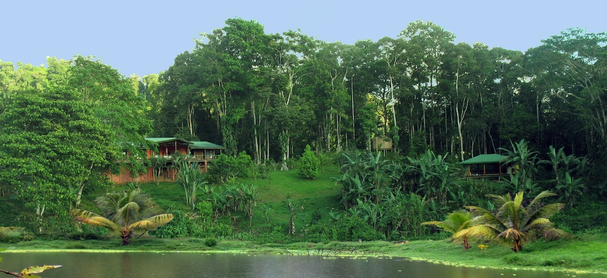 Casananda-jungle home in Platanillo