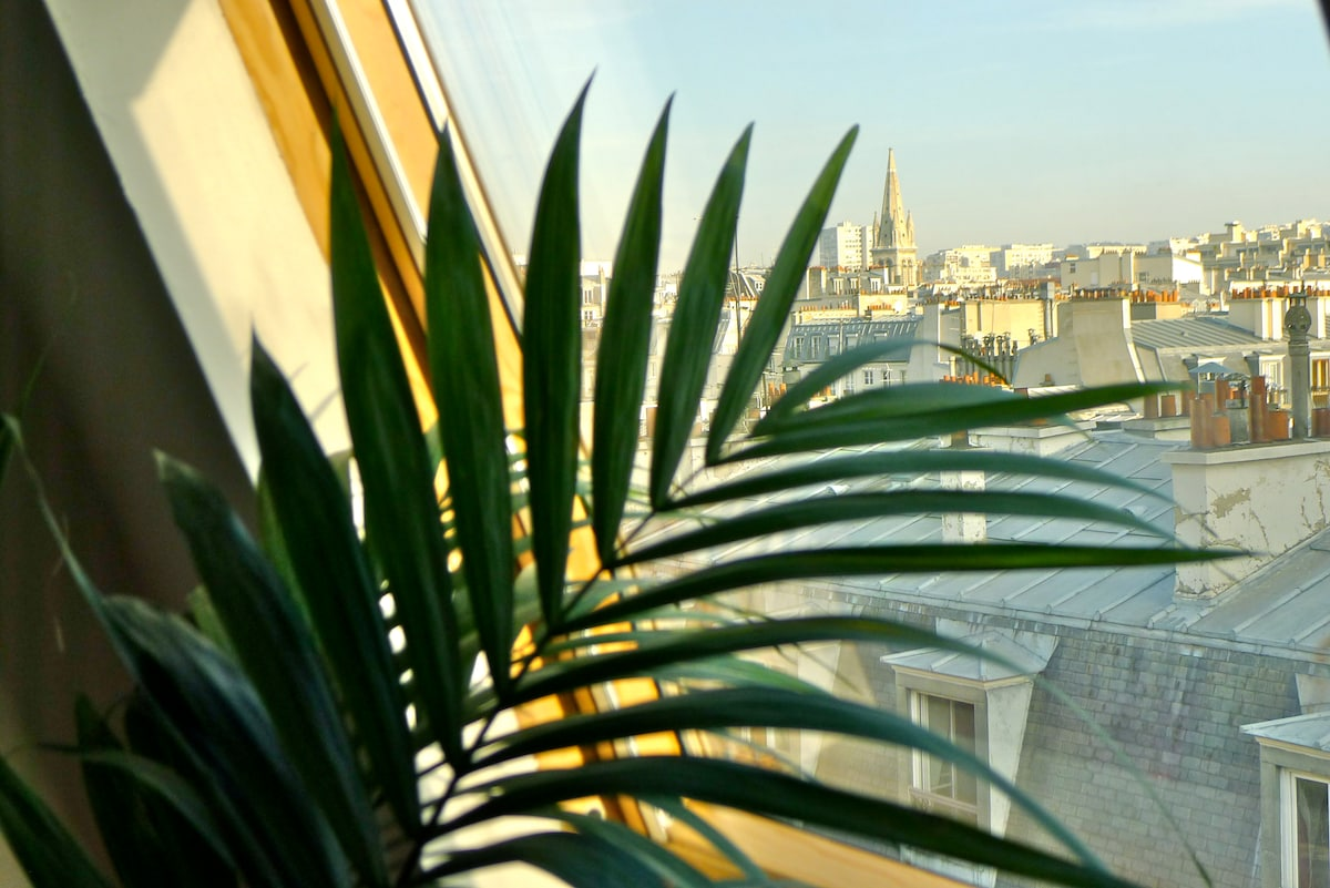 Stunning view over Paris' roofs and belltowers