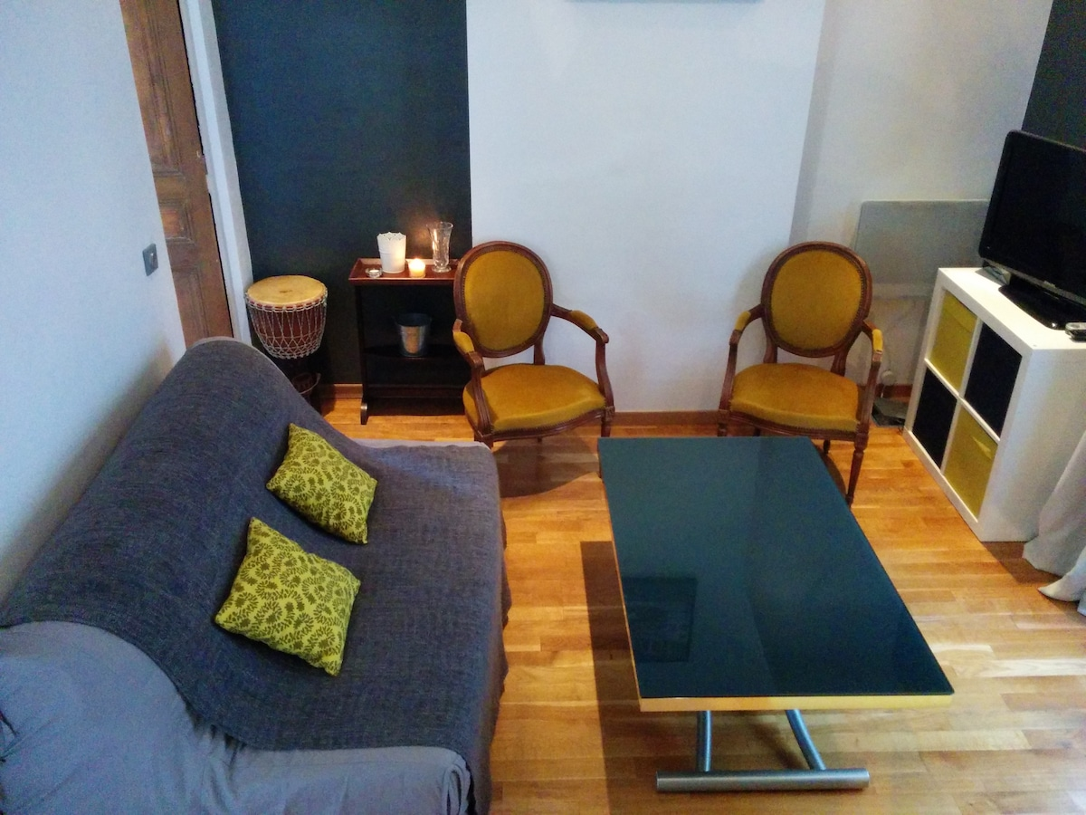 Lovely quiet flat in central Paris