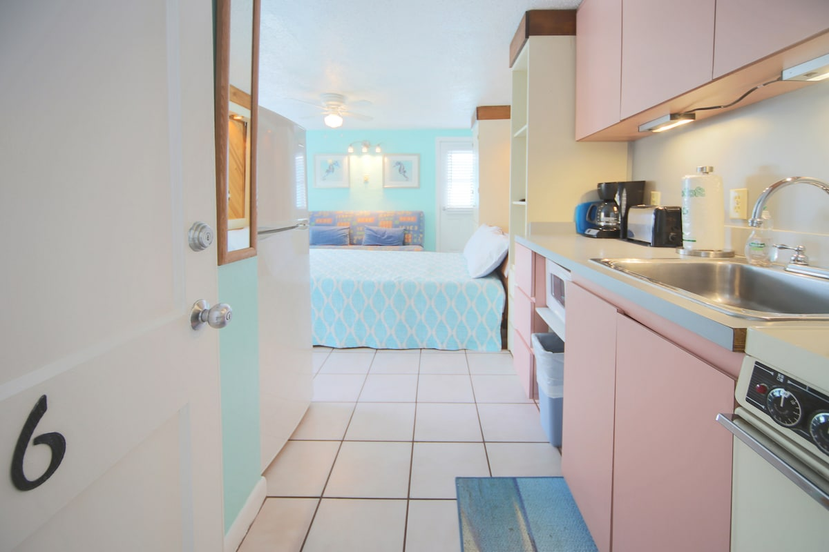 The view of the room as you enter with the Queen size murphy bed down
