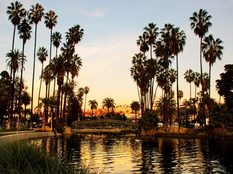 A short walk to Echo Park Lake. Recently re-opened after 2 years of renovations.