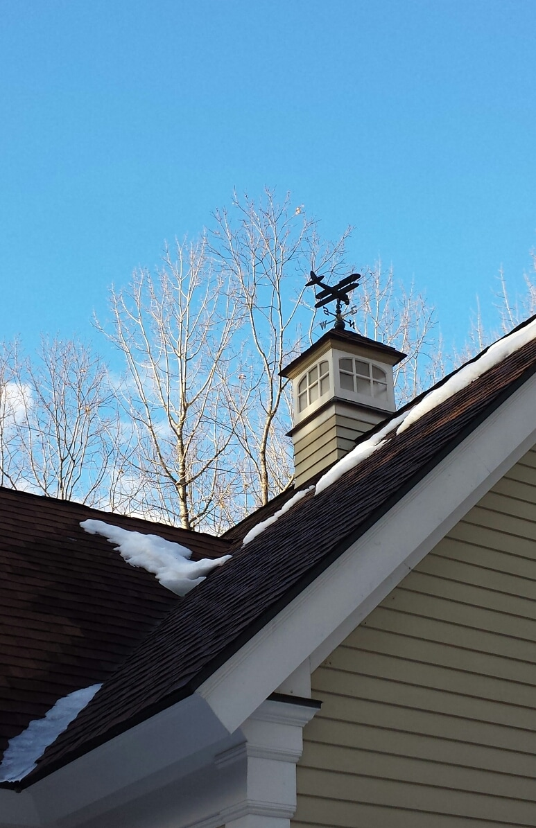 Airplane cupola. Sometimes the woodpeckers sit on the wing and tap away