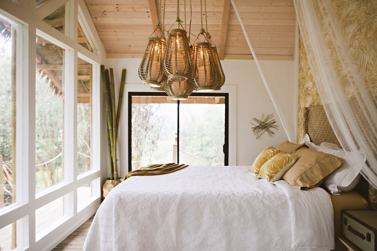 Natural lighting floods the room all day; bask in it from atop your memory foam bed