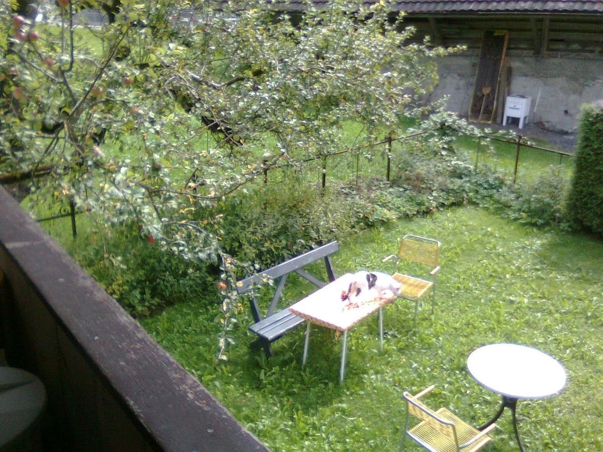Unter dem Apfelbaum - Sitzplatz im Garten