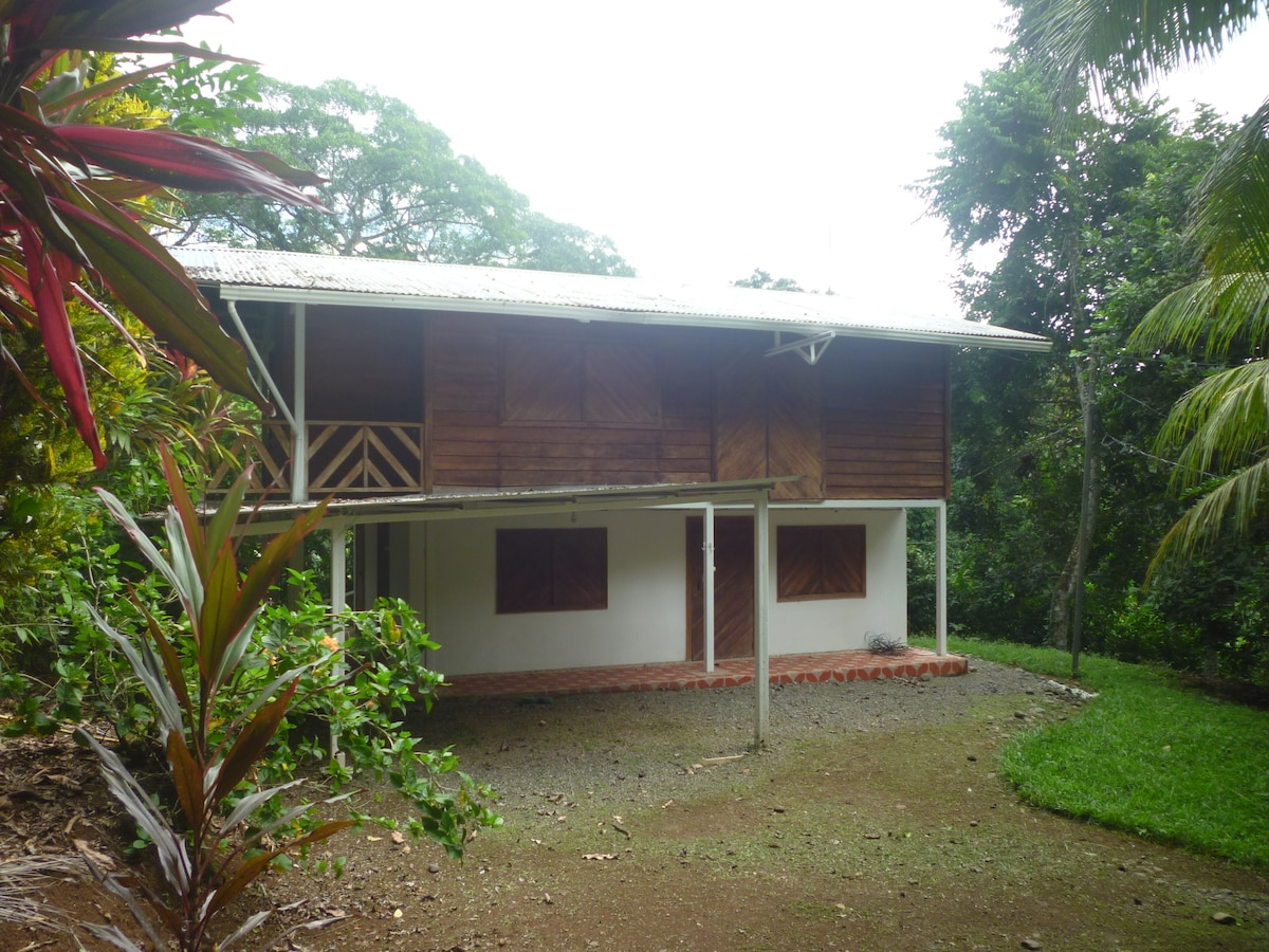 Jungle house for rent