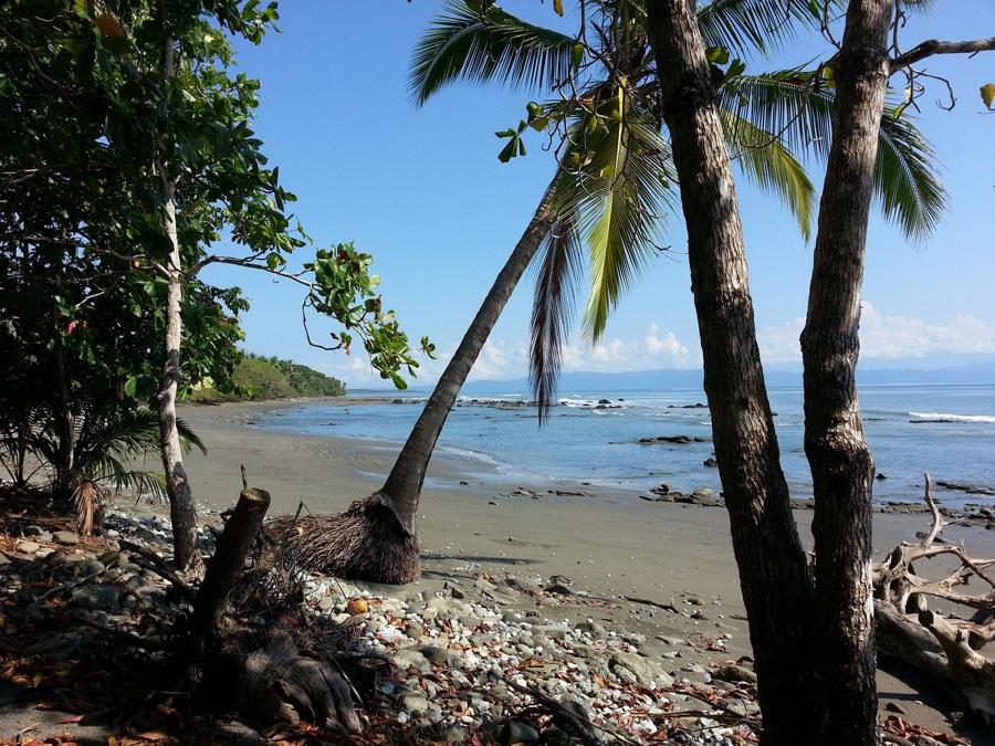 Casita Tranquila beach jungle cabin