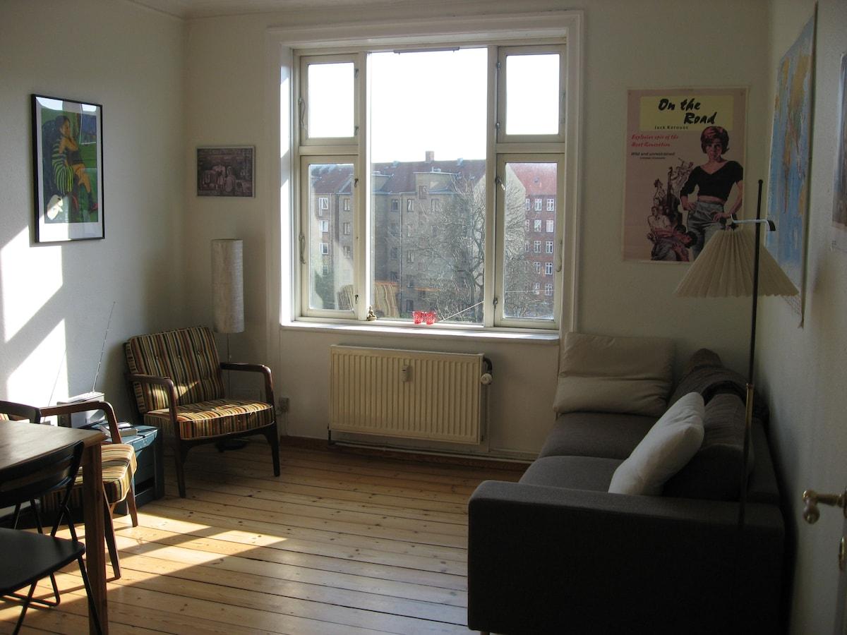 Cosy and classic Copenhagen flat