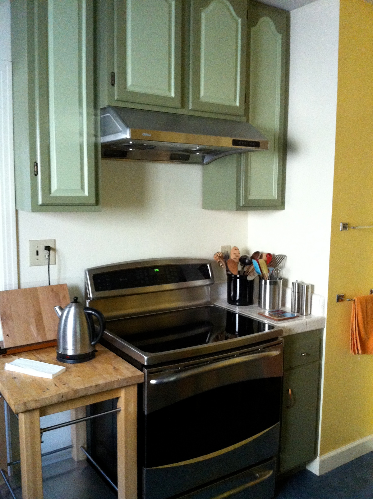 Kitchen features an induction stove and dishwasher to make life easier.