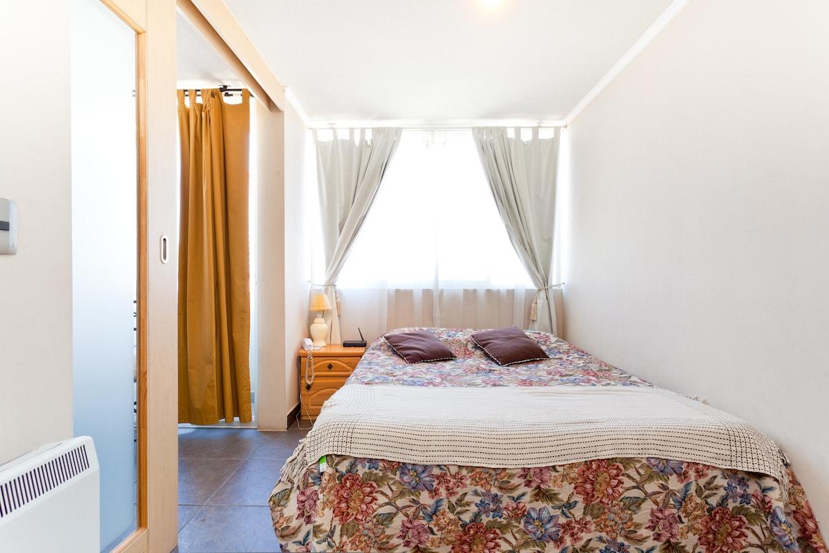 Cosy 1 bed apt Santiago center