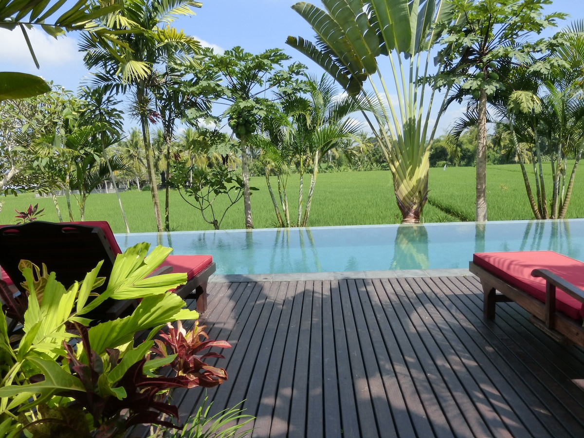 Our gorgeous infinity pool perfect for swimming and relaxing