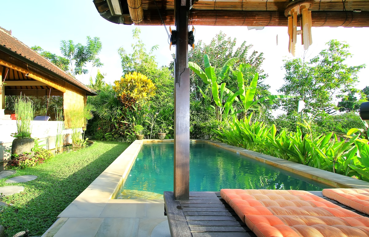 View of pool from the bale