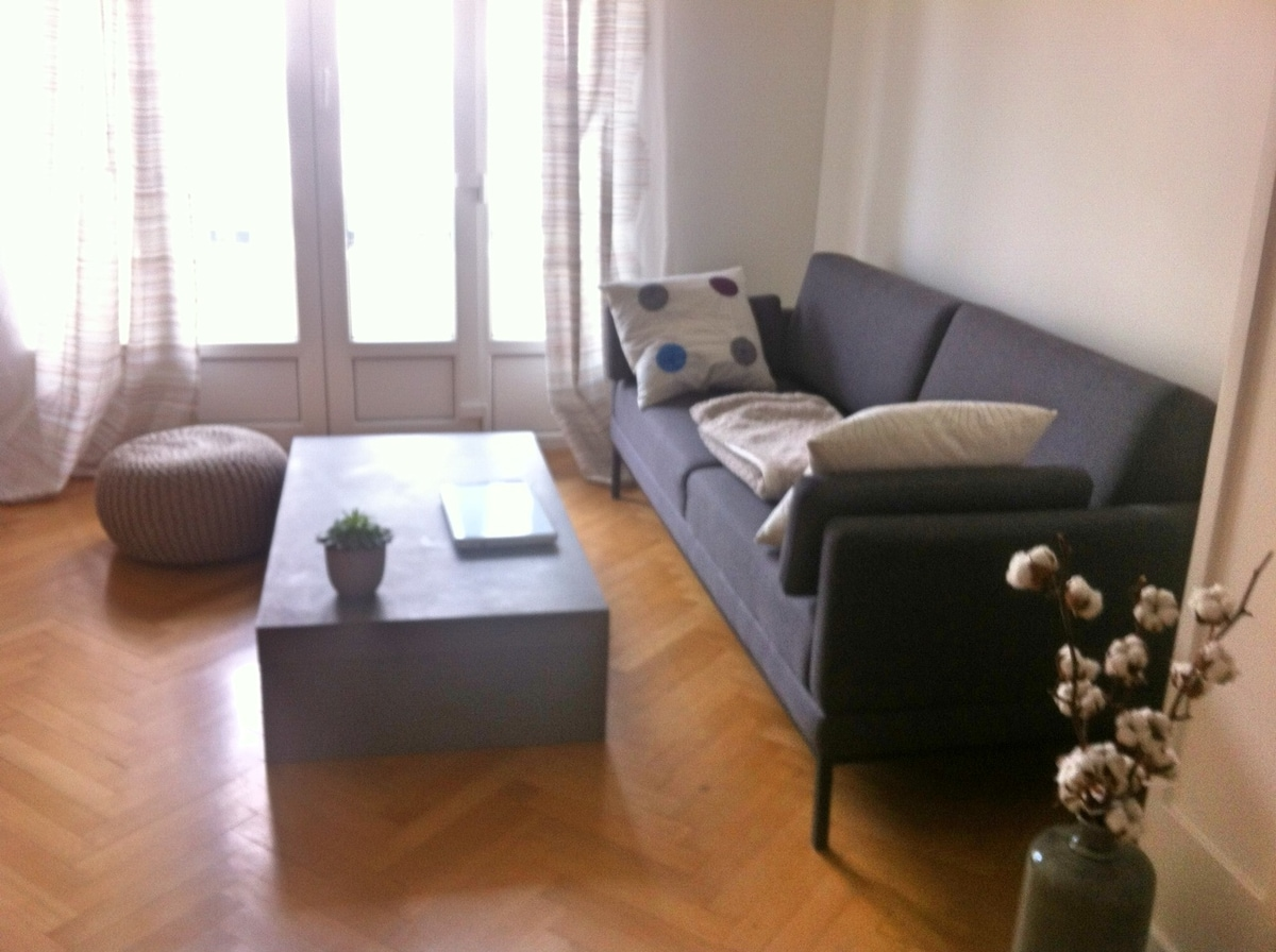Wonderful flat in heart of Nice