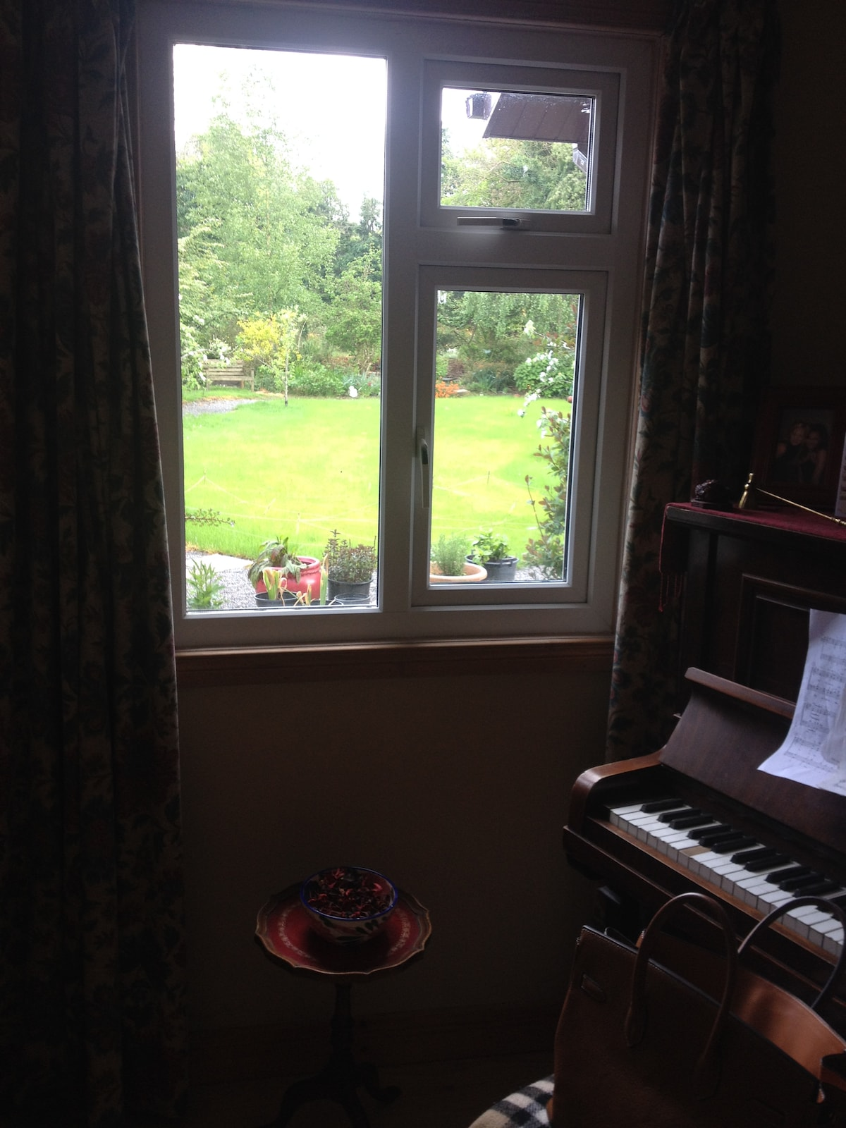 Room with a view.  (back garden)