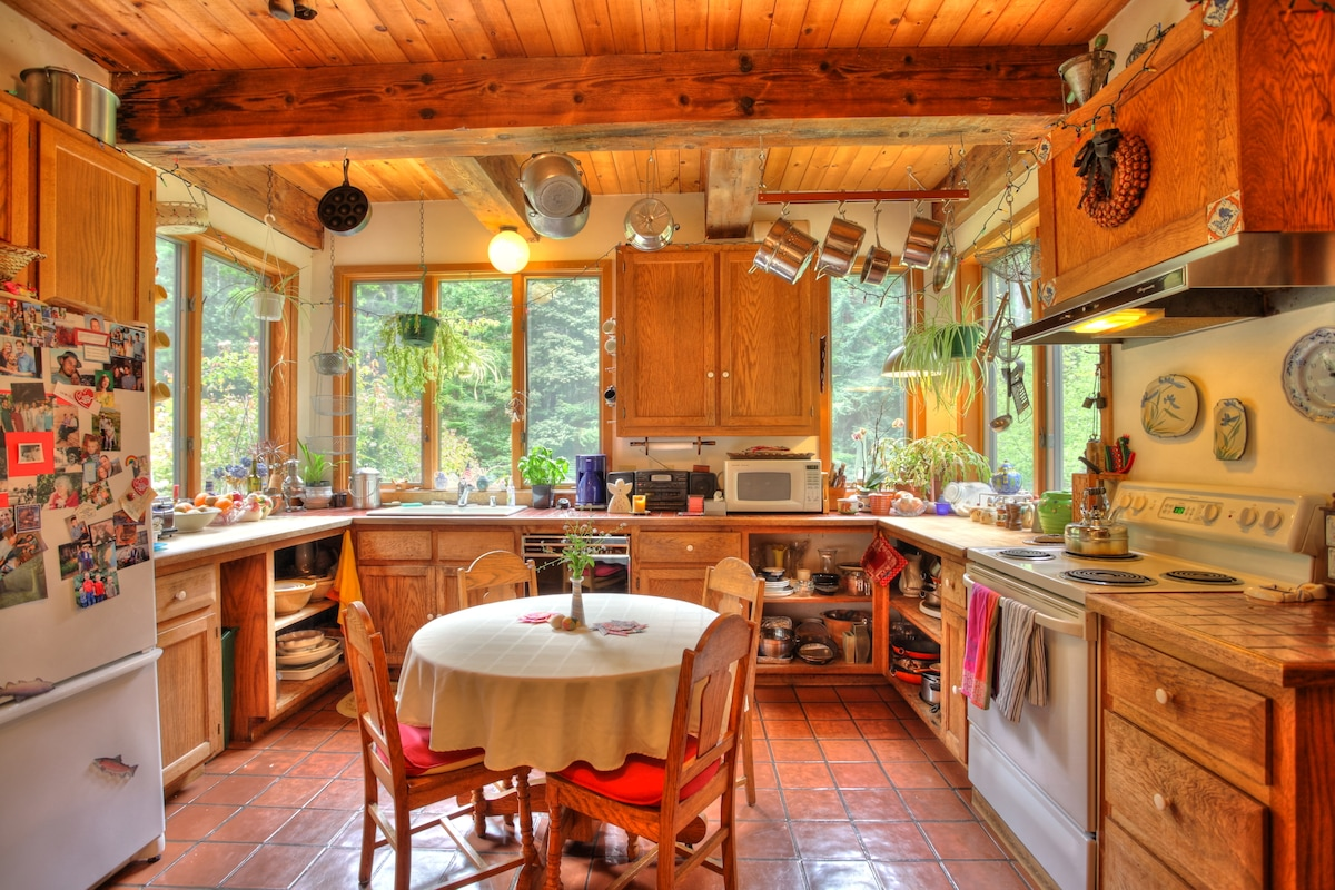 Kitchen with meadow and forest views. Great for watching birds and wildlife in the meadow