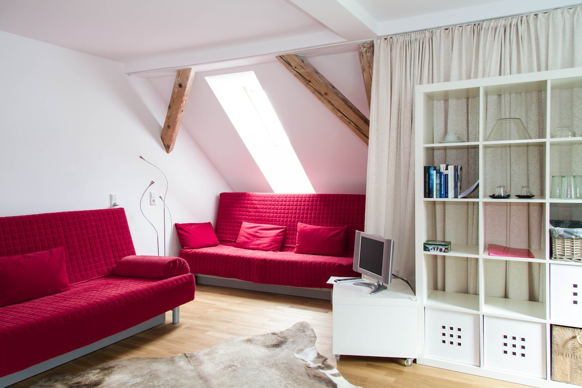 Cosy flat in the centre of Bregenz
