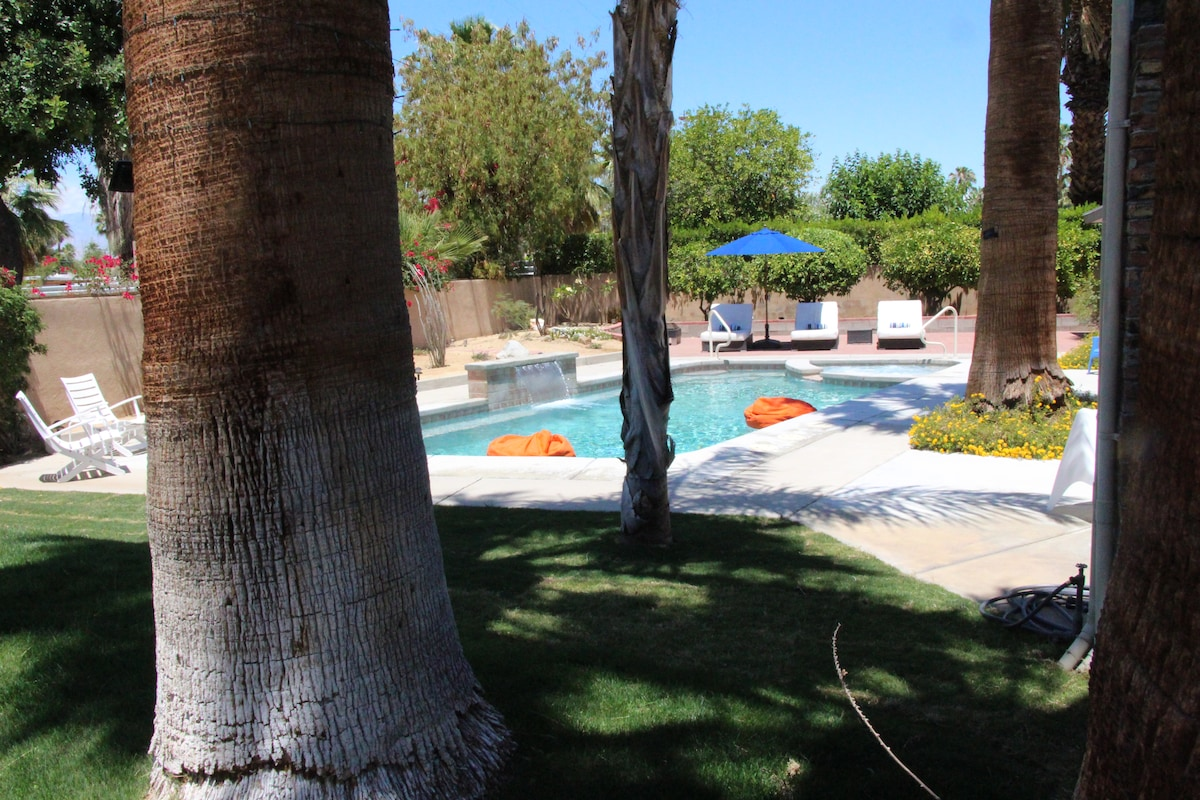 An inviting, relaxing and spacious backyard filled with 23 palm trees, a variety of tropical fruit trees and desert landscaping. Bask in the shade of the flowing palms or soak up the sun in the pool.