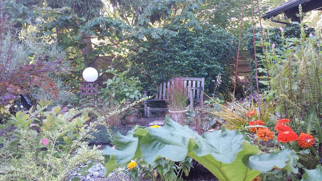 Magical garden studio