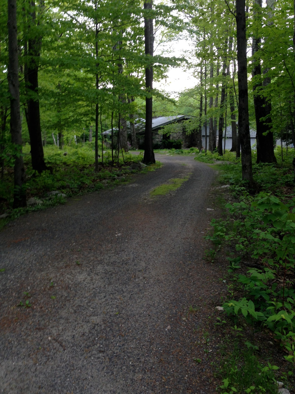 We are situated about 1/2 acre off the main road .