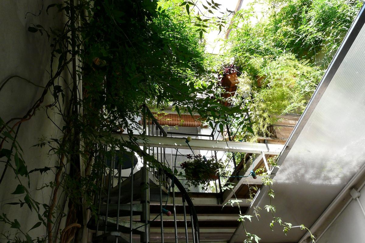 La terrasse vue de la cour
