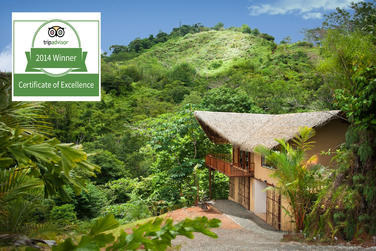 Arriving at our little retreat, surrounded by nature, rain forest and sea views