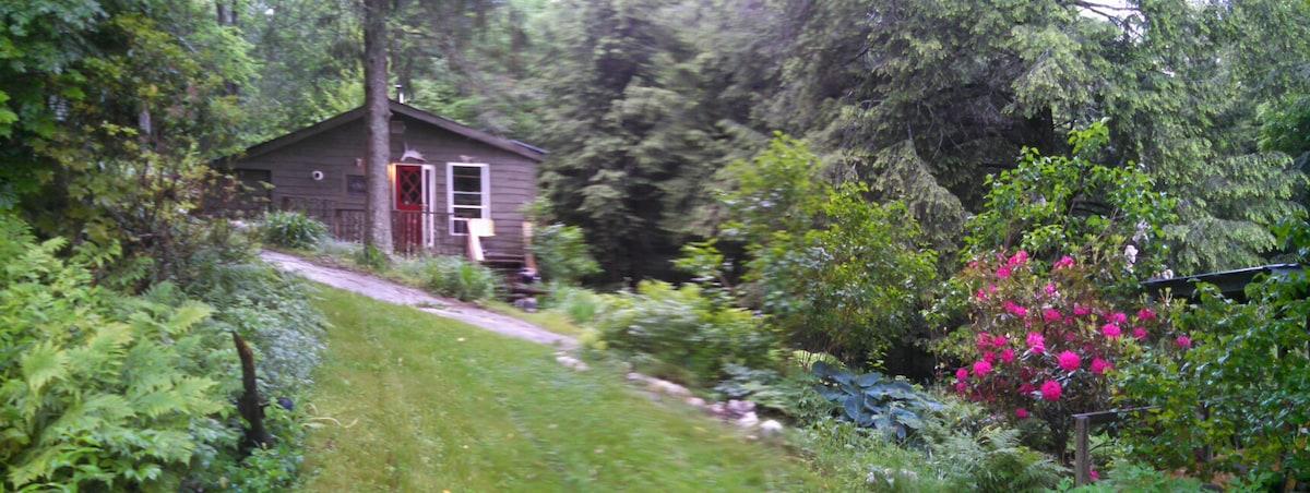Mountainside Cabin South Royalton