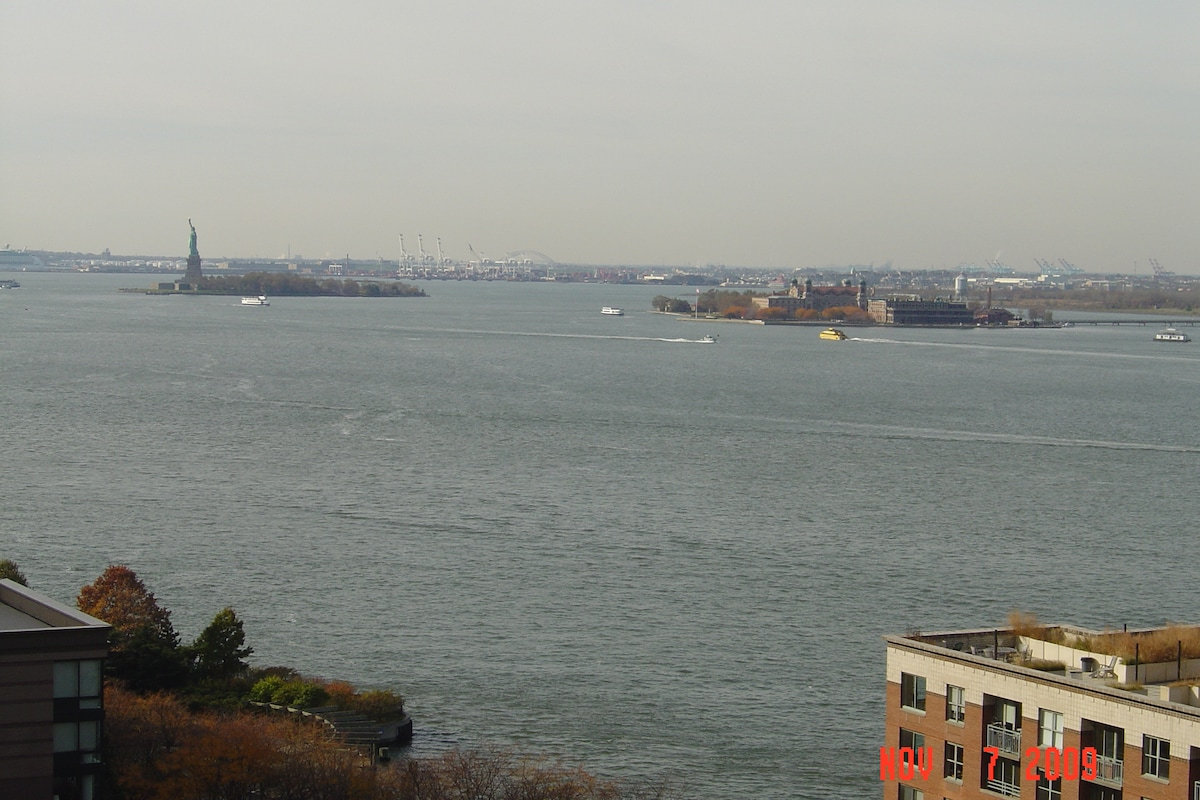 Statue of Liberty (view from terrace on a sunny day).