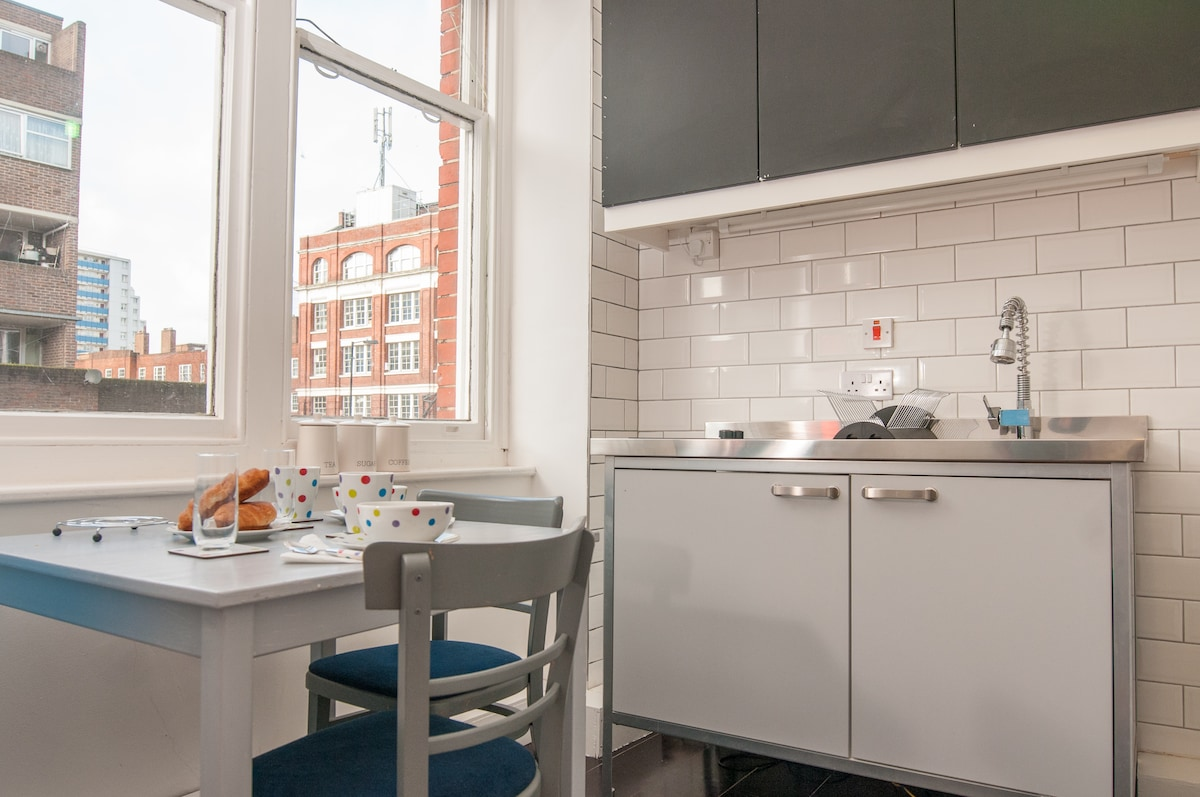 Bright Central LOndon APartment