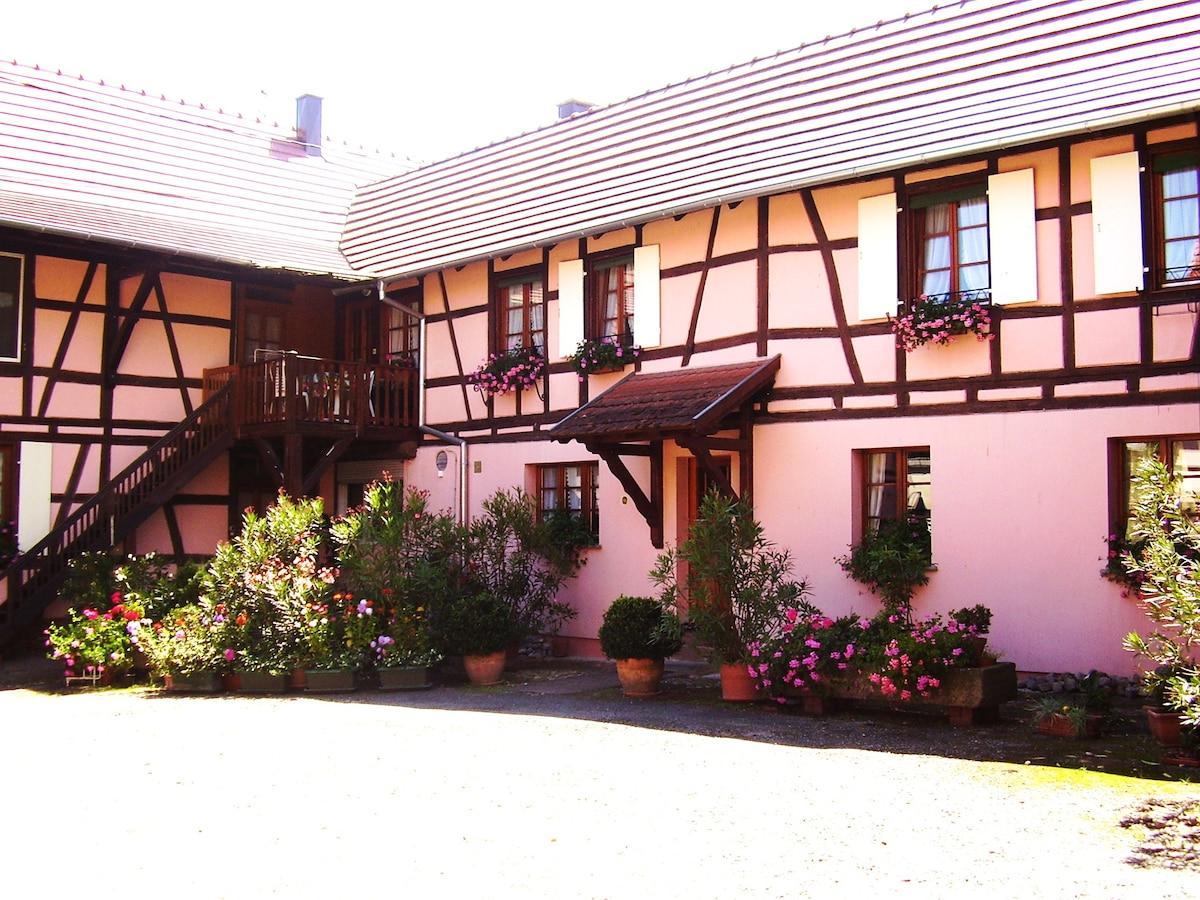 Gîte Duplex Centre Alsace 4 p.