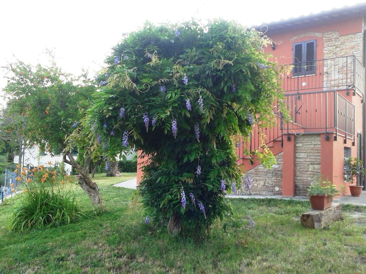 Country house in Tuscany Pisa