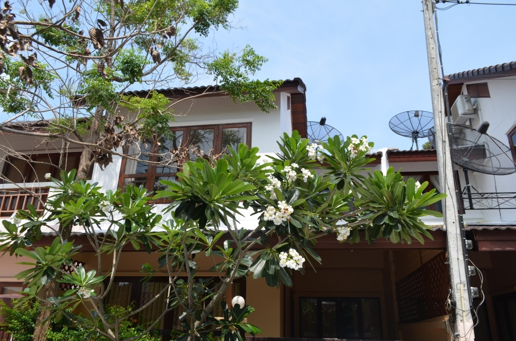 Townhouse with 2 bedroom in Chaweng