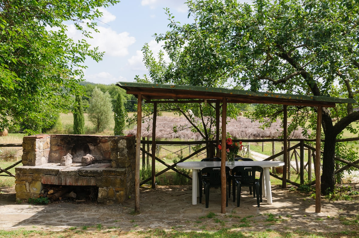 The barbecue and you outdoor dining table