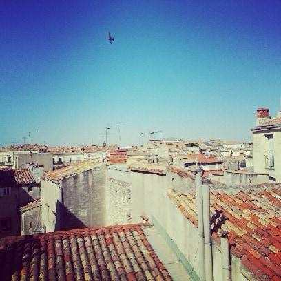 Birds, roofs, blue sky, sunset...Oiseaux, les toits, ciel bleu, coucher de soleil ...