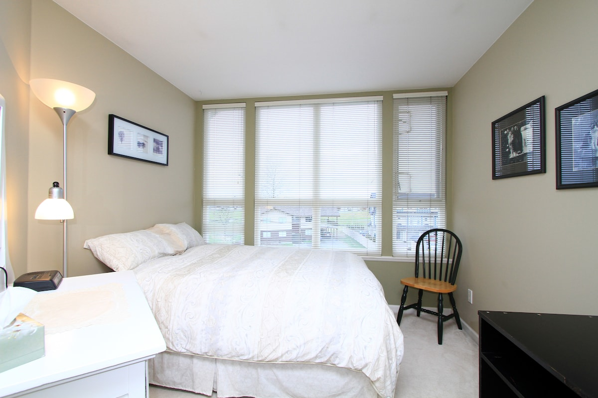 West facing bedroom with TV, double bed, dresser and closet
