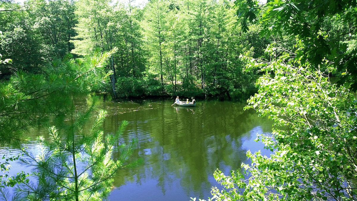 Cabin w/ Pond ~only 75 mls from NYC