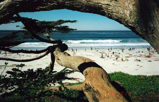 Carmel Beach . . . a 20-minute walk!