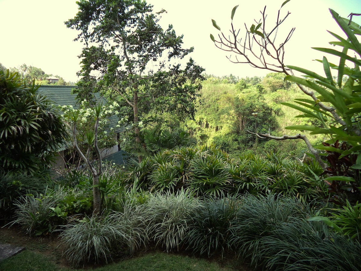 Beautiful views from your own private verandah and small garden