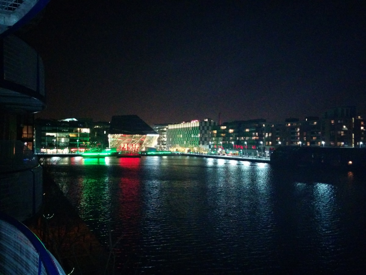 Grand Canal Dock Panoramic View