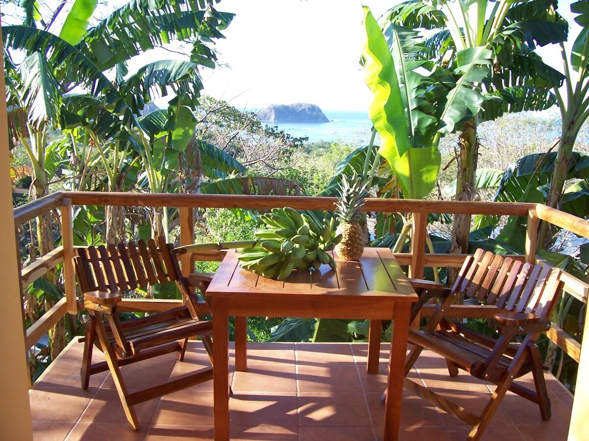 Ocean view, Pool Casa Mango