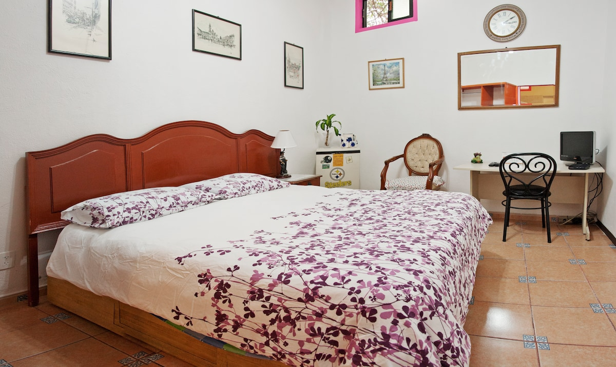 Cozy Room in the Heart of Coyoacan
