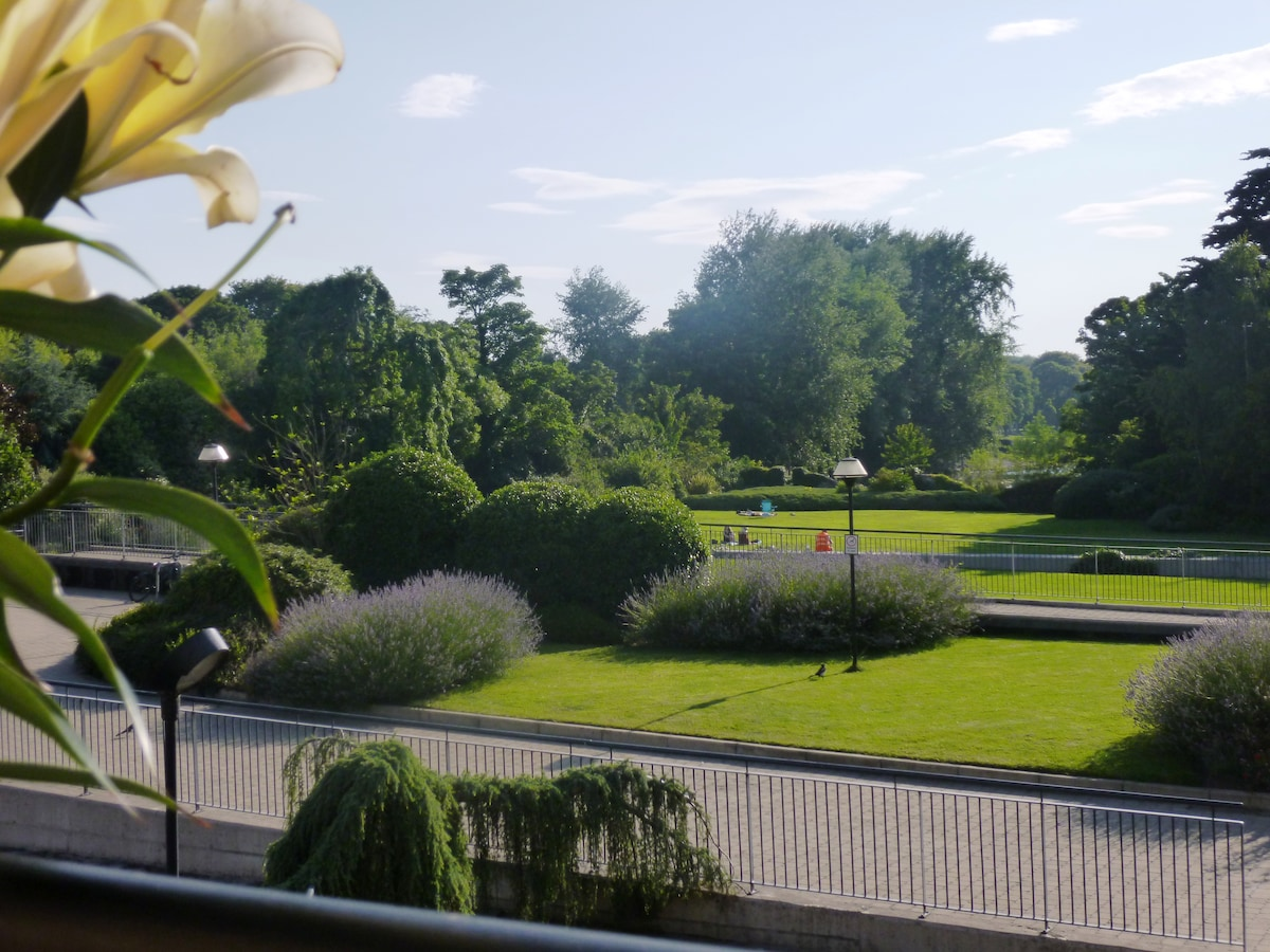 Stunning views from our south westerly facing balcony across open parklands