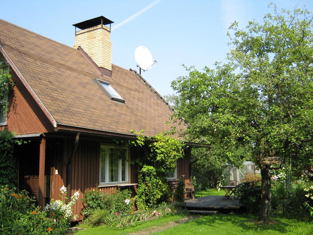 Cozy guest house / гостевой домик